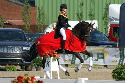Internationaal junioren paard