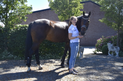 Young riders paard