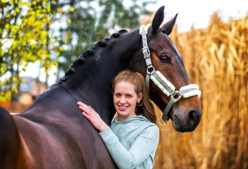 Lichte tour paard